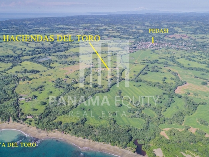 pedasi panama land for sale