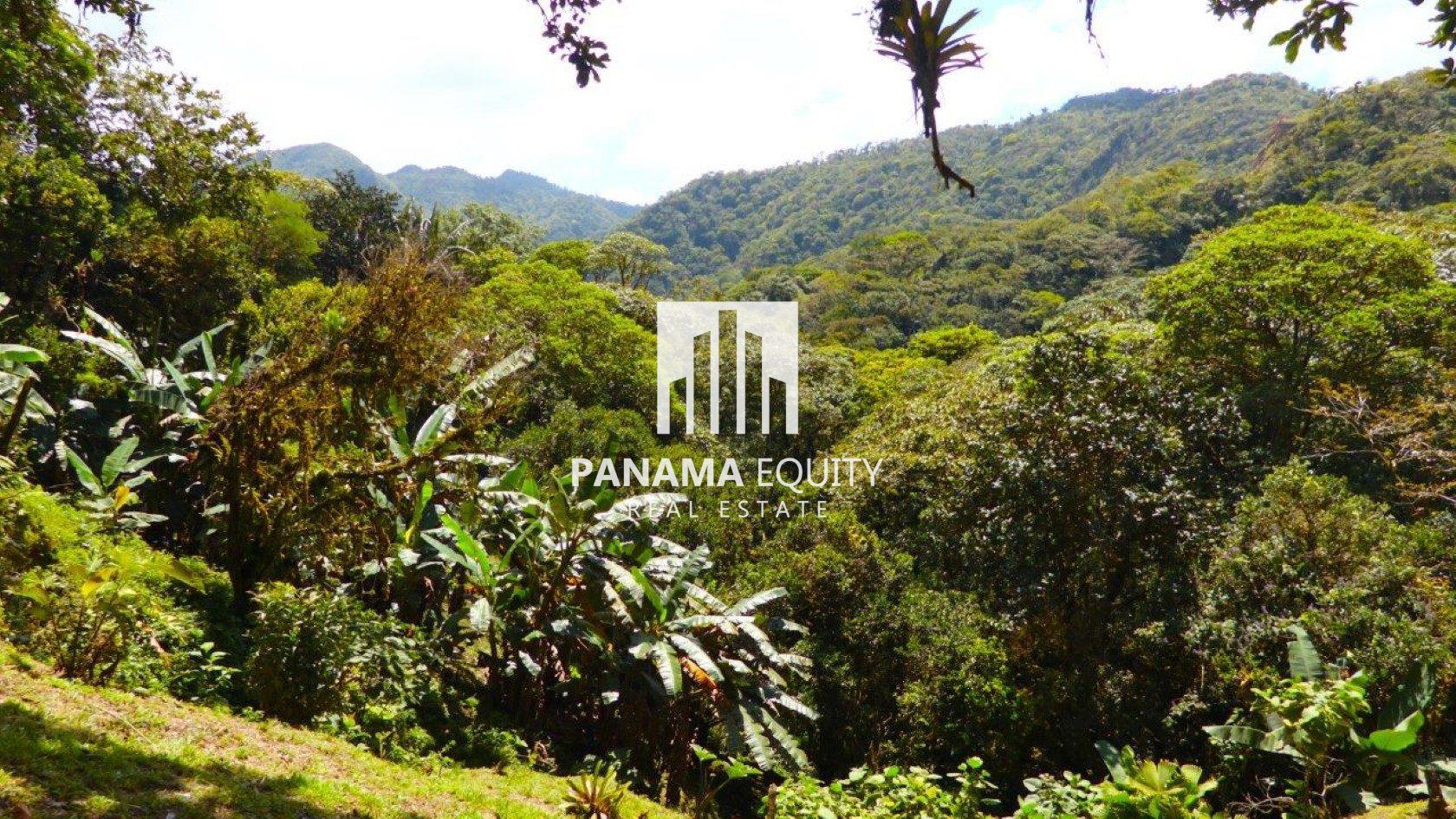 Tropical Forest Estate in El Valle de Antón