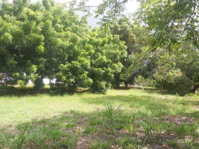 Coronado Panama beach land for sale