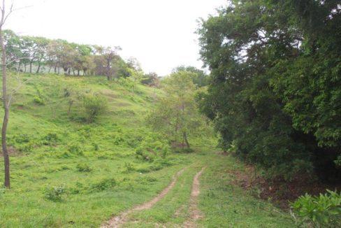 Mountain Estate Minutes from Coronado 2