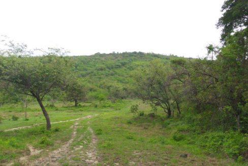 Mountain Estate Minutes from Coronado 5