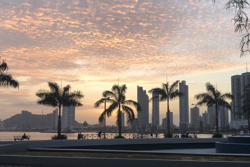 panama city skyline with view of sunset and palm trees