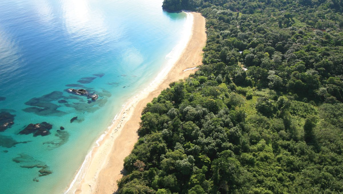 Red-frog-beach-marina-bocas-del-toro-panama-image-3-1