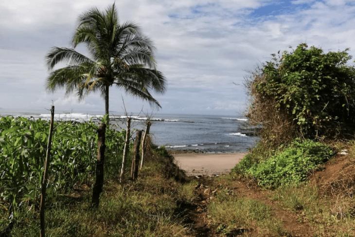 El Ciruelo: Pedasi Beach