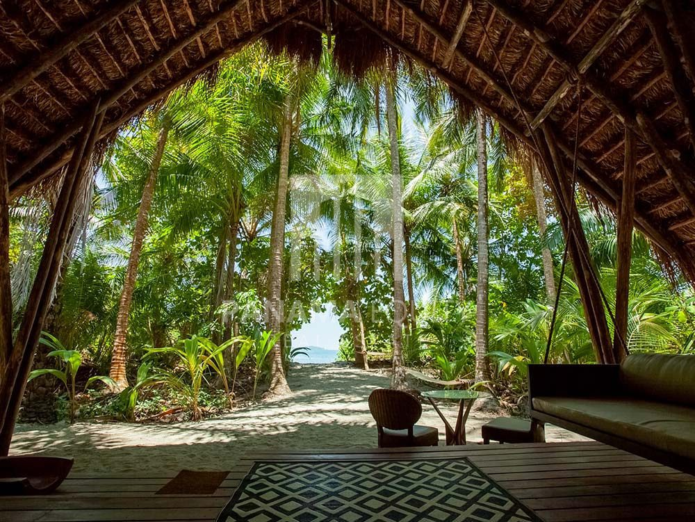 Relax-into-the-Rainforest-Rhythm