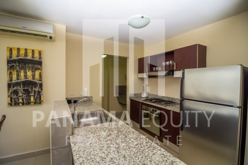 Vitro Loft El Cangrejo Panama For Rent or Sale-6