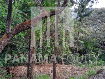 laurel altos del maria panama land for sale