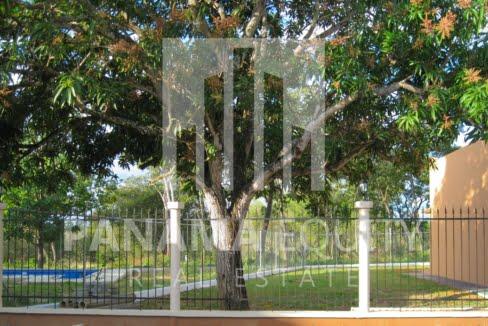 gorgona panama single family home for sale (5)