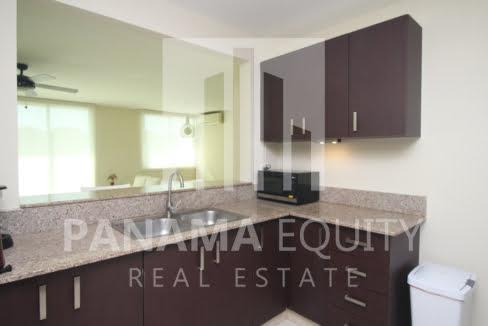 Clayton Park Clayton Panama Apartment for sale-005