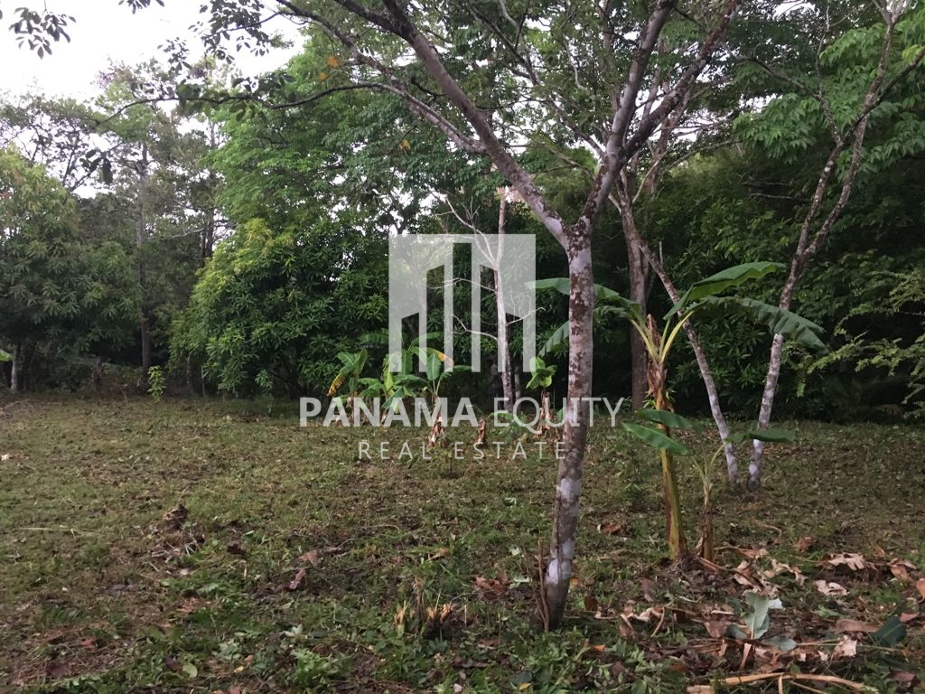 Ready to build Residential Lot for Sale in Anton