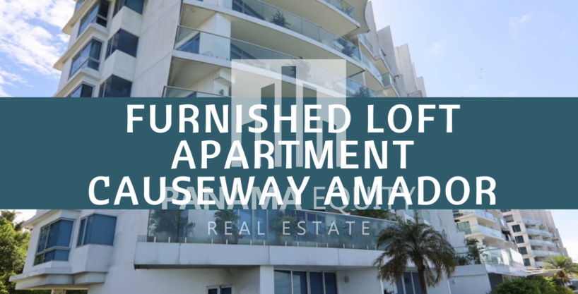Spacious and Bright Furnished Loft Apartment For Rent in PH Naos Causeway Amador